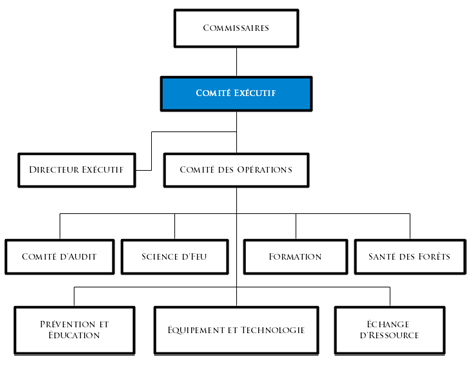 Executive Committee flowchart